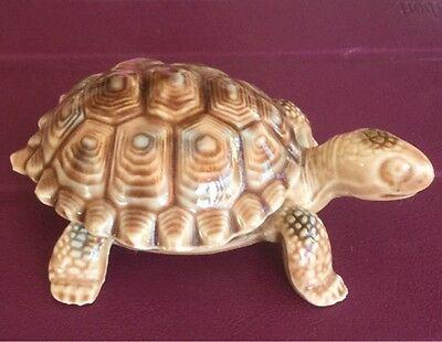 Wade Tortoise Dish/ Trinket Box for sale  Benfleet