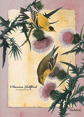 American Goldfinch Audubon Garden Size (13