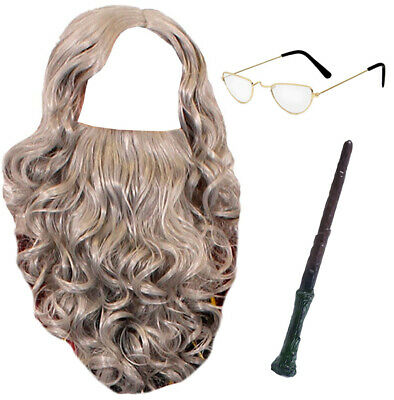 WIZARD ACCESSORY SET TV FILM CHARACTER FANCY DRESS TEACHER WORLD BOOK DAY OUTFIT (Tv Character Outfits)