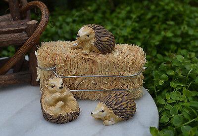 Miniature Dollhouse FAIRY GARDEN Accessories ~ Set of 3 Mini Resin Hedgehogs NEW