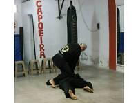 Martial art partner