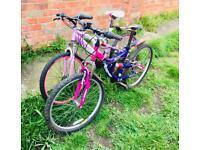 X2 Mountain Bike Ammaco & Muddy Fox Dream Sportz Teens Girls