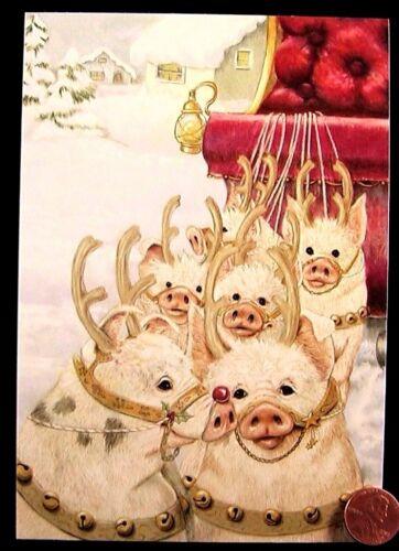 CHRISTMAS Pigs Reindeer Sleigh Snow - Joy Campbell Christmas Greeting Card - NEW