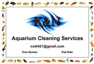 Aquarium Cleaning!
