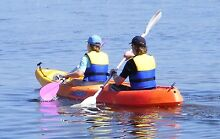 DOUBLE SIT ON KAYAK WITH 2 DOUBLE ENDED PADDLES & USED LIFE  JKTS Long Jetty Wyong Area Preview