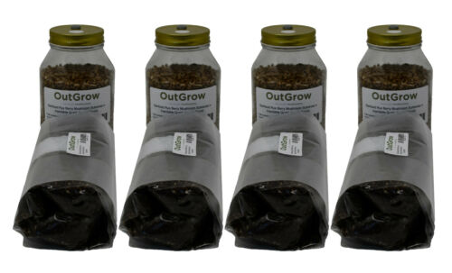 Four Quart Jars of Rye and Four One Pound Bags of Manure Based Substrate