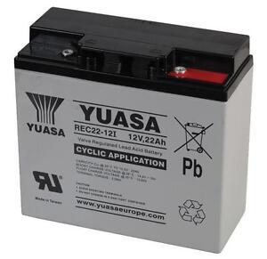 Tosaerba-batteria-al-GEL-YUASA-12V-22Ah-Sostituisce-F19-12B