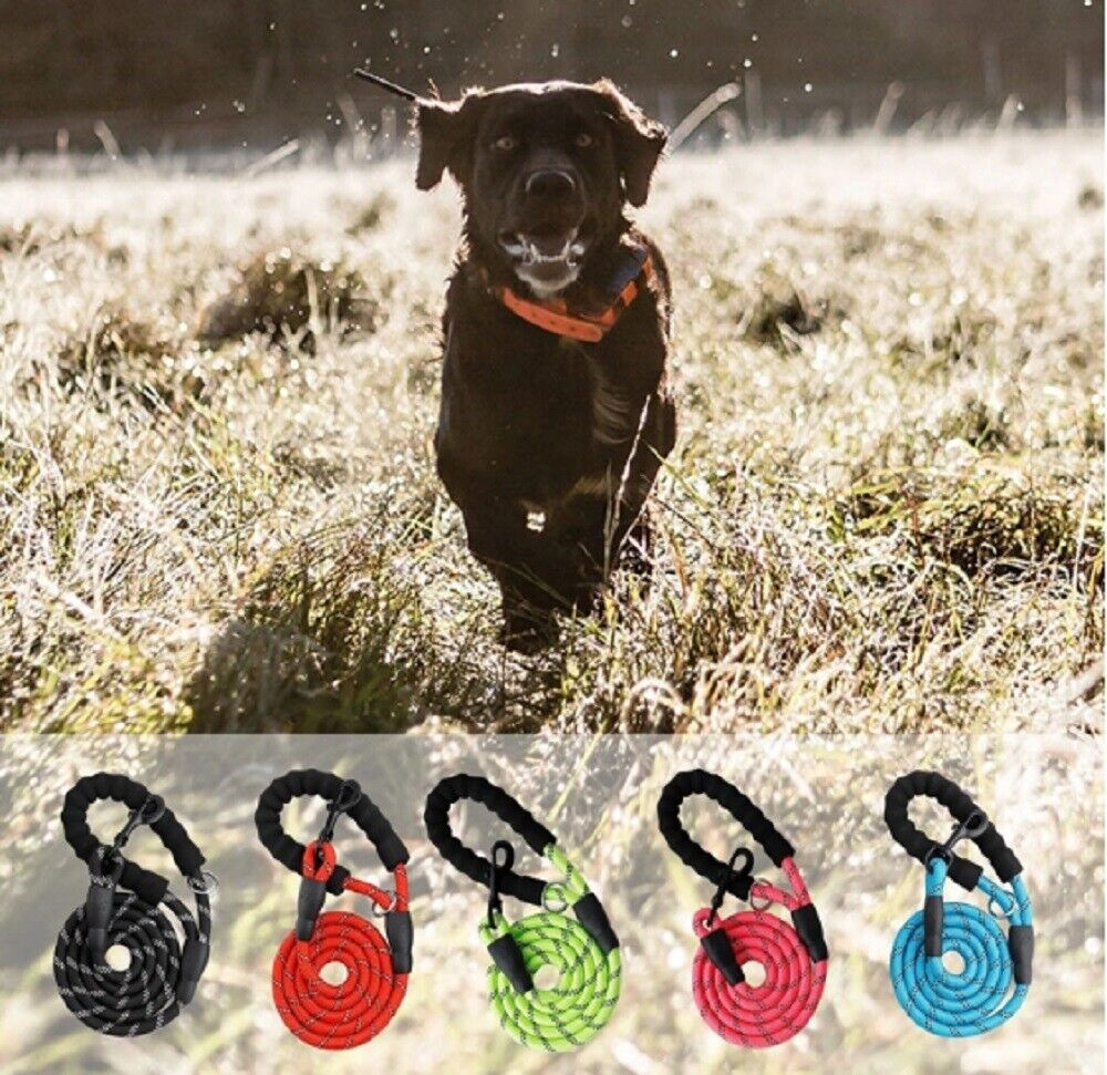 5 FT Service Dog Rope Leash Lead Training Padded Handle Reflective Nylon Puppy Dog Supplies