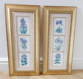 Pair of Matching Wall Hanging Pictures with Gold Frames - Spring & SummerFlowers