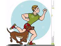 The Dog Runner east lothian