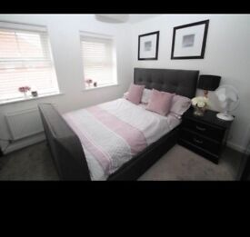 Stunning double room to rent with en suit