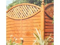 Fence decking and shed painting