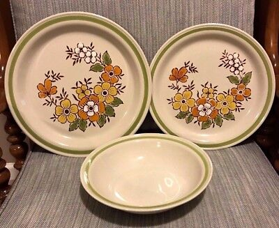 Spring Stoneware - 3X Country Casual Spring Garden Hand Painted Stoneware Japan