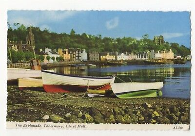 The Esplanade Tobermory Isle Of Mull 1981 Postcard 823b