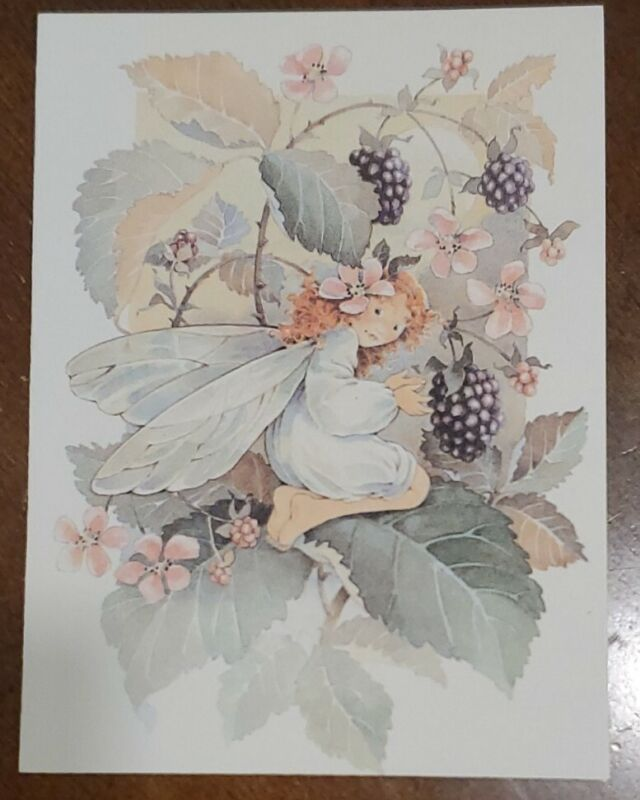 6 Vintage Whiting blank notecards, cute fairy in blackberry bush Morgan Creative