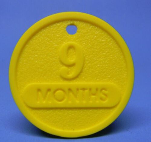 NARCOTICS ANONYMOUS 9 MONTH  ANNIVERSARY CHIP - MEDALLION