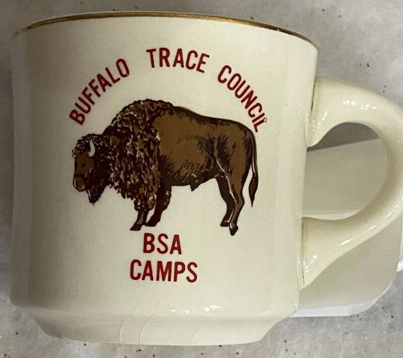 Vintage 1975 Boy Scouts BSA Camps Buffalo Trace Council Mug  Cup