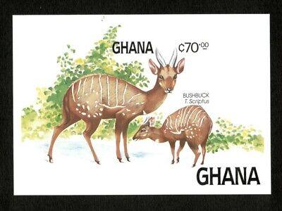 Ghana 1984 - Scott# 932 Fauna and Flora, Bushbuck, Animal - Imperf S/S - MNH