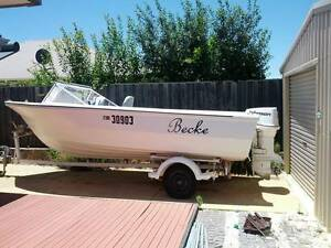 5.4M fibreglass boat with 100HP Johnson outboard Ellenbrook Swan Area Preview