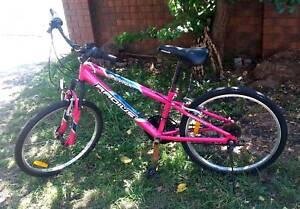 Girls/Ladies 24inch Mountain Bike Pink 21 Speed Lynx Radius