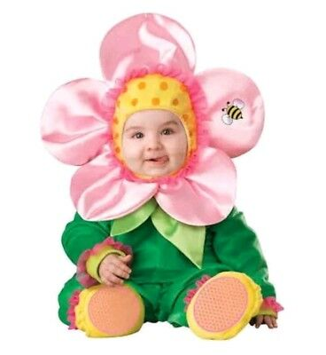 InCharacter Baby Blossom Flower Halloween Costume 6-12 mo Cute Pink Green Flower