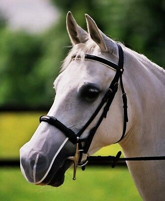 Equilibrium MUZZLE NET Relief Head Shake White/Black/Brown CAVESSON FLASH Bridle](Cheap Horse Costume)