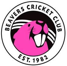 Cricket players in Sydney! Sydney City Inner Sydney Preview