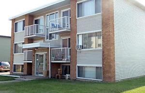 Welcome to Trina Place 11930 - 82 Street NW Edmonton Edmonton Area image 6