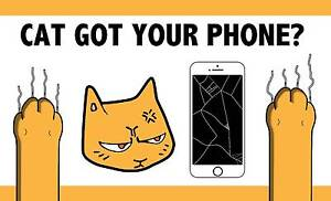 iPhone LCD Screen Repair comes to you! Carina Brisbane South East Preview