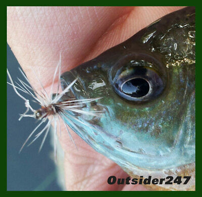 "PIKE  BASS /& BRIM SUMMER  /& WINTER ICE  FISH ! CRAFTED GIANT EARWIG 4/"" WALEYE"