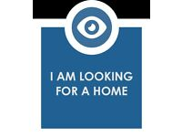 Looking for 1/2bedroom/orflat to rent