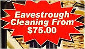 London Eavestrough Cleaning~Professional Gutter Clean from $75