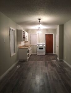 Fully Renovated Complete House