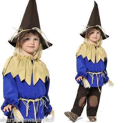 Jungen Vogelscheuche Zauberer von oz Büchertag Halloween Kostüm - Junge Vogelscheuche Kostüme