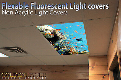 Light Diffuser Panels ( Fluorescent Light Panel Diffuser Reef Film Ceiling Doctor Office Preschool 27 )