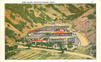 Vintage Postcard Bird Aviary Catalina Island CA Los Angeles County