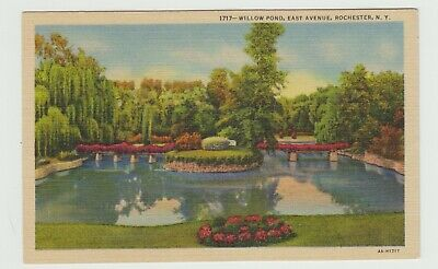Willow Pond, East Avenue, Rochester, NY, Linen Postcard