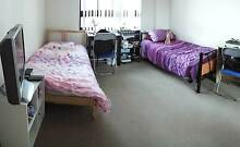 Ultimo Wattle Street girl room share Ultimo Inner Sydney Preview