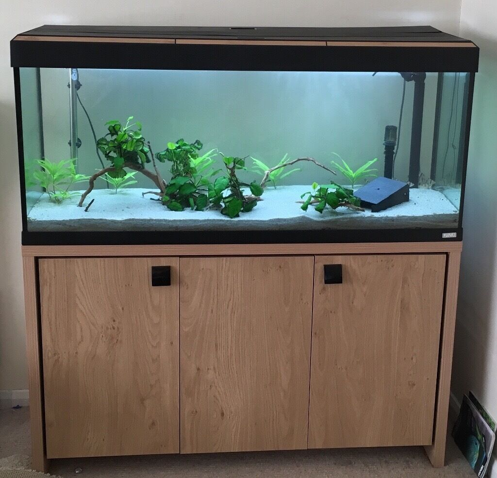Fluval Roma 240 + Cabinet + 406 External Filter + Lots More