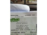 Justin bieber Sheffield standing