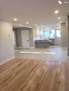 5-1/2 loft style fully renovated apartment