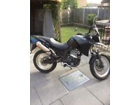 Derbi Terra for sale