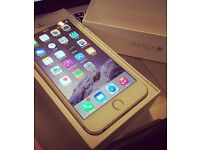 iPhone 6 Plus white & gold 16gb may swap great condition
