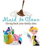 cleaning lady sparkles home fast n cheaper price