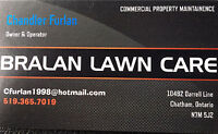 Commercial Lawn Care and Landscaping Services