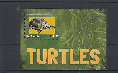 GAMBIA 2013 MNH TURTLES 1V S/S REPTILES AFRICAN HELMETED TURTLE STAMPS