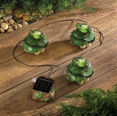 Solar Frog Trio Garden Decor Item #: 13224