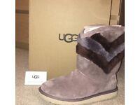 Ugg Boots Suede Grey/Purple