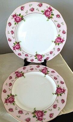 Royal Albert New Country Roses Pink Vintage Set of 2 Dinner Plates NEW