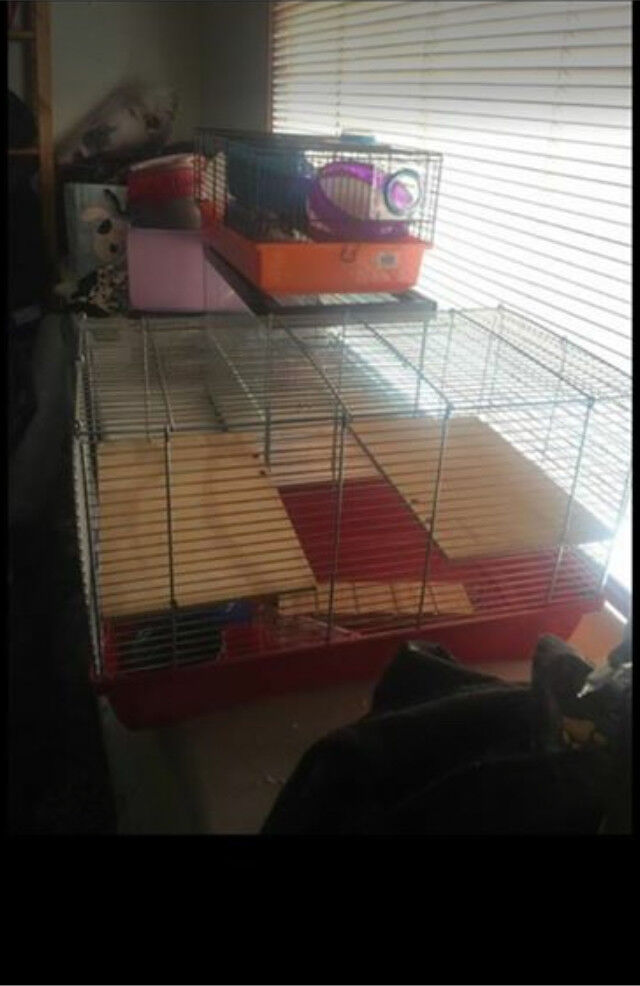 Hamster/gerbil/mice cages and bits